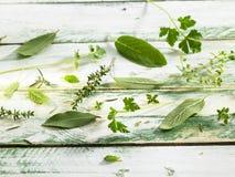 свежий выбор трав Стоковое Изображение