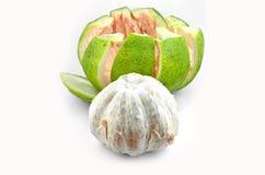 Свежий грейпфрут Стоковое Фото