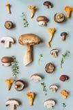 Свежий гриб плюшки пенни с смешанными грибами на голубой предпосылке, взгляд сверху Стоковое фото RF