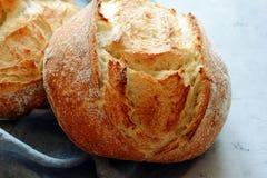 Свежий домодельный хлеб на серой предпосылке crisp разведенный франчуз Хлеб на активизирует Пресный хлеб стоковое фото rf