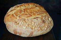 Свежий домодельный хлеб от всей муки пшеницы и рож с семенами, тыквой и овсом льна шелушится на коричневой предпосылке crisp стоковое изображение rf