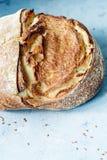 Свежий домодельный хлеб от всей муки пшеницы и рож с семенами, тыквой и овсом льна шелушится на коричневой предпосылке crisp стоковое изображение