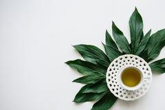 Свежий душистый и здоровый травяной или зеленый чай в кружке фарфор dishes свежее время чая клубник фарфора Стоковые Изображения