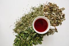 Свежий душистый и здоровый травяной чай в стекле или кружке на белой деревянной поверхности Рядом с ним травы лож различные высуш Стоковые Фотографии RF
