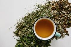 Свежий душистый и здоровый травяной чай в стекле или кружке на белой деревянной поверхности Рядом с ним травы лож различные высуш Стоковое фото RF
