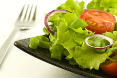 свежий здоровый салат плиты Стоковое Изображение RF