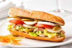 Свежий здоровый сандвич багета на белой плите Стоковое Изображение RF