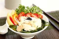 свежий здоровый tofu салата стоковое фото