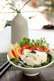 свежий здоровый tofu салата стоковое фото rf