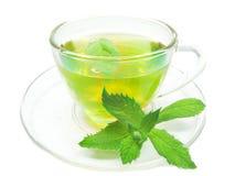 свежий зеленый травяной чай мяты Стоковое фото RF