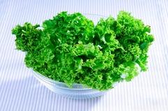 свежий зеленый цвет выходит салат Стоковое Фото