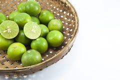 Свежий зеленый цвет известки Стоковая Фотография