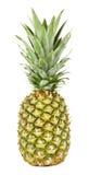 Свежий зеленый ананас Стоковая Фотография RF