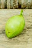 Свежий зеленый кокос Стоковое Фото