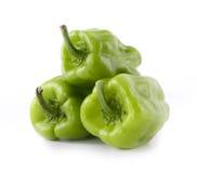 Свежий зеленый перец стоковые изображения rf