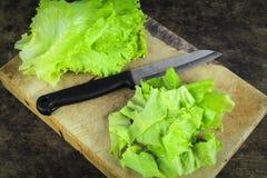 Свежий зеленый салат, зеленый салат лист Стоковые Фотографии RF