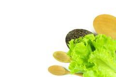 Свежий зеленый салат, зеленый салат лист Стоковые Фото