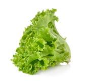 Свежий зеленый салат изолированный на белой предпосылке Стоковые Фото