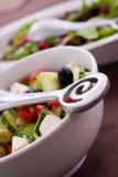 Свежий зеленый салат сада Стоковые Фото