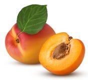 Свежий зрелый абрикос с лист, одним отрезал в половине с косточкой стоковые фотографии rf