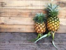 Свежий зрелый ананас как раз выбрал вверх от сада стоковые изображения rf