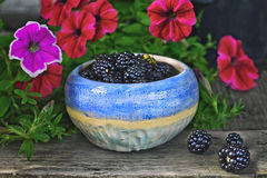Свежий здоровый плодоовощ: ежевика на деревянной предпосылке Стоковое Фото