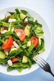 Свежий здоровый салат с цыпленком, томатами, шпинатом и авокадоом на голубом деревянном взгляд сверху предпосылки Стоковая Фотография