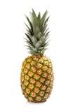 свежий изолированный ананас Стоковое Фото
