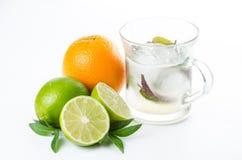 свежий лимонад Плодоовощ Оранжевая известка лимона и зеленая мята Стоковая Фотография
