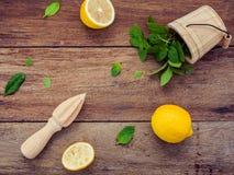 Свежий лимон и деревянный juicer для сока и коктеиля лета Fre Стоковое Изображение RF