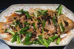 Свежий испарил все рыбы покрытые с луками & соусом трав стоковые фото