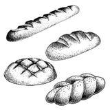 Свежий испеченный набор хлеба Французский багет, плюшки хлебца, плюшка оплетки Иллюстрации стиля эскиза руки вычерченные для мага иллюстрация штока