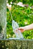 Свежий и чистая вода фонтанирует от источника горы стоковая фотография rf