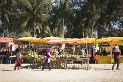 Свежий кокос глохнет на ` s St Martin, Бангладеше Стоковые Изображения RF