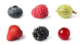 Свежий комплект ягод стоковое изображение