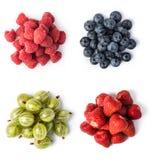 Свежий комплект ягод стоковые фото