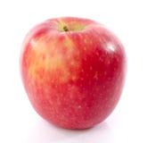 Свежий королевский торжественный крупный план яблока стоковое изображение rf