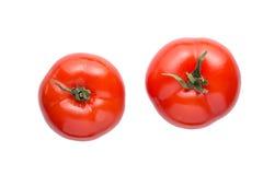 Свежий красный томат изолированный на белой предпосылке Стоковая Фотография RF