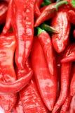 свежий красный цвет перца паприки Стоковые Изображения RF