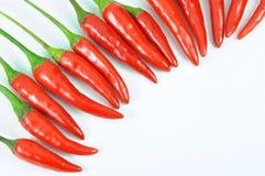 свежий красный цвет перца Стоковые Фото