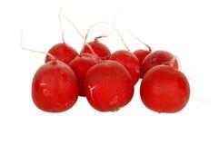 свежий красный цвет редиски Стоковое фото RF