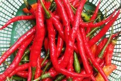 Свежий красный chili в корзине стоковая фотография