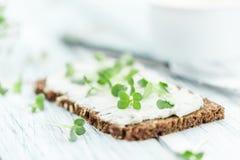 Свежий кресс с сметанообразным сыром на куске хлеба & x28; селективный fo Стоковая Фотография