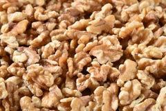 Свежий крупный план грецких орехов стоковое фото rf