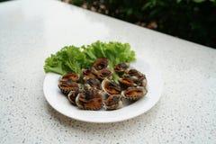Свежий куколь крови или кровь - Grilled отбеленные clams служили стоковое изображение