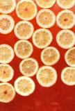 свежий лимонад Стоковые Фотографии RF