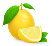 Свежий лимон стоковые изображения