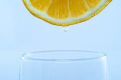 свежий лимон Стоковые Изображения RF