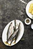 Свежий малый снеток рыб моря, сардина на простой предпосылке с кусками соли, розмаринового масла и лимона Взгляд сверху против ка Стоковые Изображения RF
