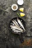 Свежий малый снеток рыб моря, сардина на простой предпосылке с кусками соли, розмаринового масла и лимона Взгляд сверху против ка Стоковое Фото